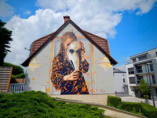 Raphael Gindt - Street Murals and Murals