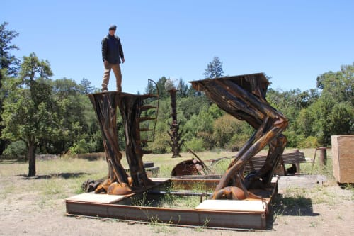 Sculptures by Bryan Tedrick Sculpture seen at Wilson Winery, Healdsburg - COYOTE