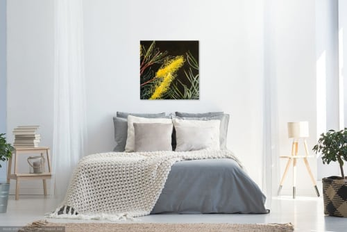 Paintings by Julie Hollis Contemporary Art seen at Private Residence, Gold Coast - Grevillea - New Blossoms Finalist Qld Regional Art Awards 2019
