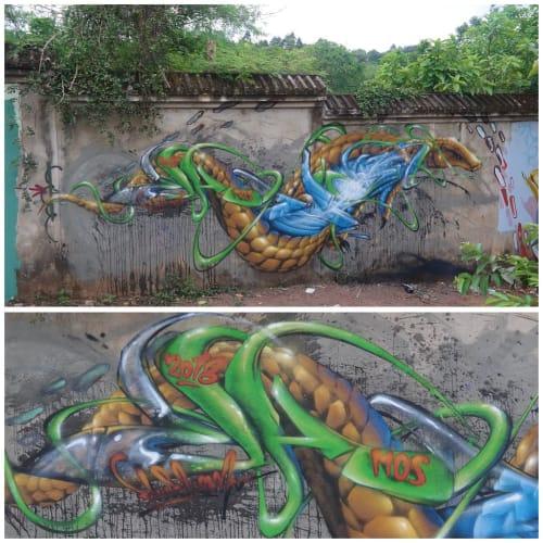 Street Murals by Chuck Mayfield seen at Thua Thien Hue - Twisted Pangolin Graffiti