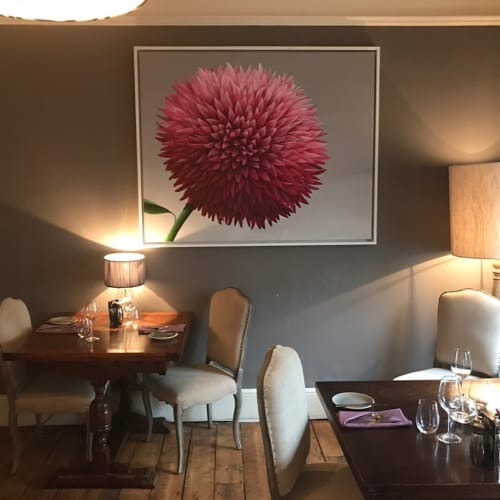 Paintings by Mary-Ann Watt seen at The Northgate, Bury Saint Edmunds - Chrysanthemum