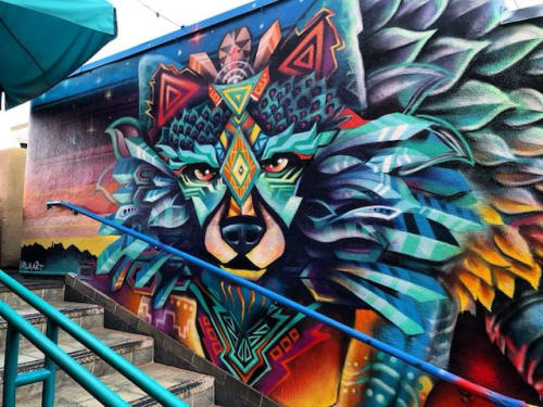 Murals by VELA ART seen at Coyote Cafe & Rooftop Cantina, Santa Fe - Coyote Vision