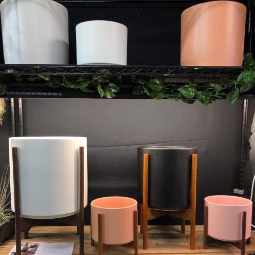 Vases & Vessels by LBE Design seen at Indoor Sun Shoppe, Seattle - Ceramic Cylinder Planters by LBE Design