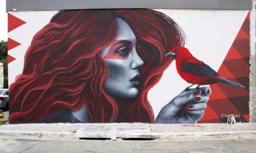 Murals by Clara Leff seen at Desentupidora Império, Jardim Cachoeira - Red