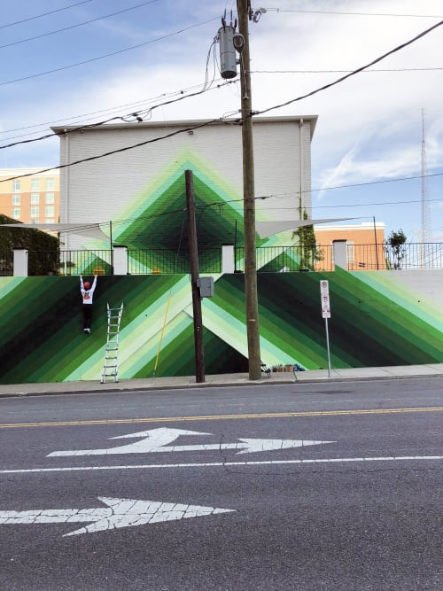 Street Murals by Nathan Brown seen at 310 Peabody St, Nashville - Sobro Guesthouse mural