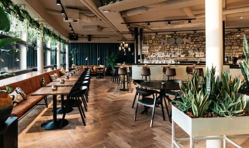 Reiters - Interior Design and Renovation
