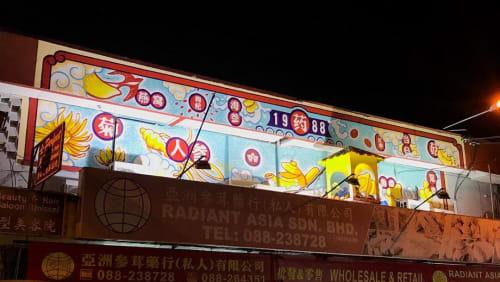 Murals by Wilson Ng seen at Radiant Asia, Kota Kinabalu - Mural