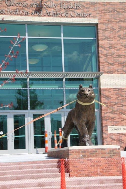 Public Sculptures by Bob Guelich seen at George and Sally Haddix Athletic and Recreation Center, Crete - Tiger