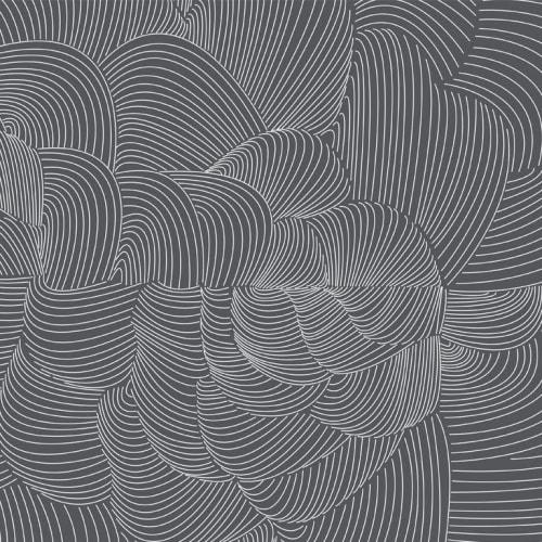 Wallpaper by Jill Malek Wallpaper - Cocoon   Coal