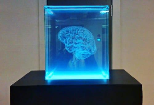 Public Sculptures by Angela Palmer seen at Saïd Business School, Oxford - Brain of the Artist