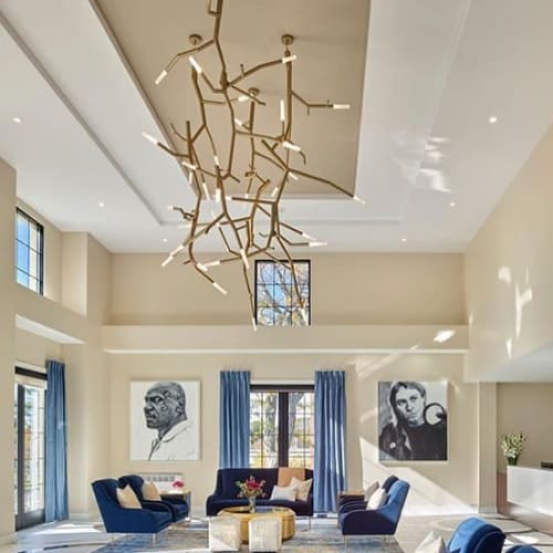 Lighting by CP Lighting seen at Private Residence, Boston - newGROWTH2 LED fixtures