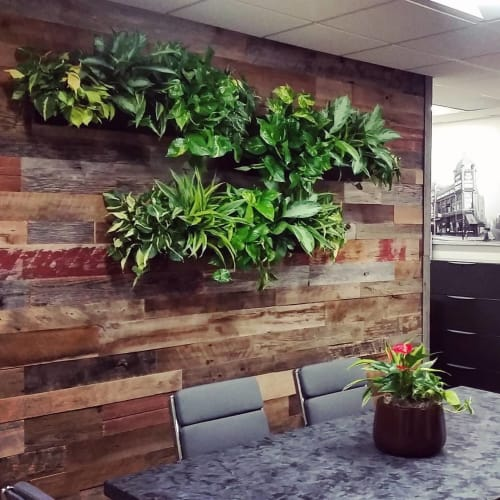 Plants & Flowers by Botanika Interior Plantscapes seen at Coseo Properties, San Diego - Plant Wall