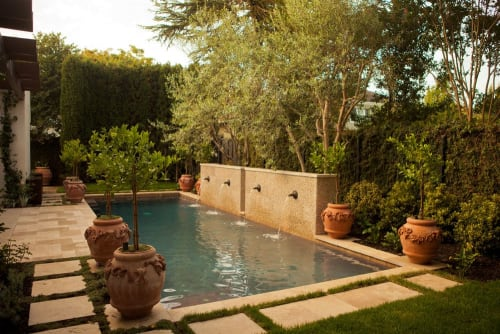 Plants & Landscape by Zeterre Landscape Architecture seen at Private Residence, Palo Alto - Villa Bougainvillea - Palo Alto
