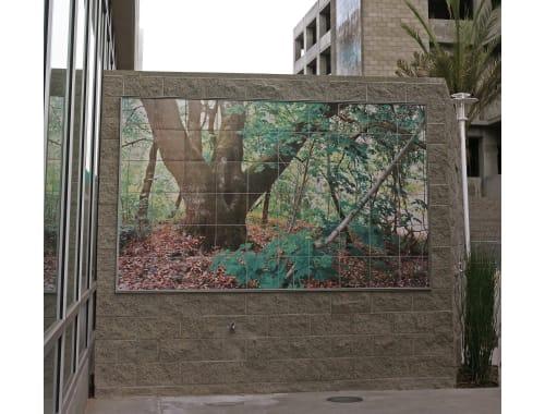 Murals by Ken Gonzales-Day seen at DPSS, Los Angeles - Photographic Murals