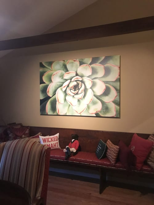 Photography by Jessica Manelis seen at Private Residence, Southampton - Graphic Succulent