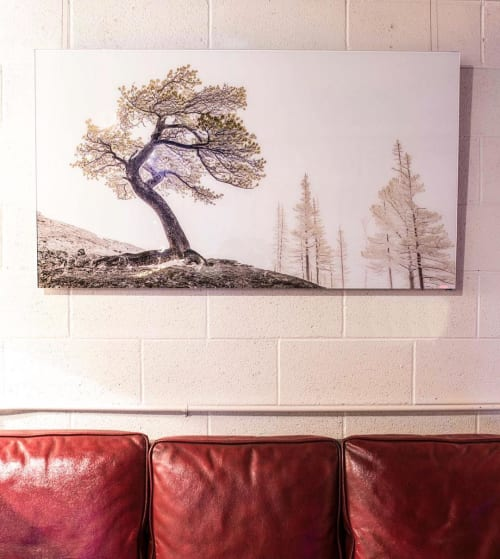 Paintings by Jd Dennison seen at Private Residence, Chicago - Bristlecone Pine Painting