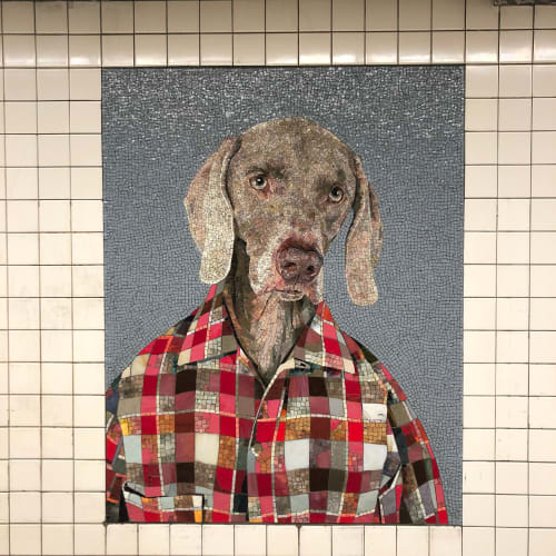 Public Mosaics by William Wegman seen at 23rd Street, New York - Dog Man Mosaic