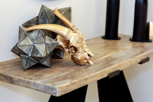 Gypsy Mountain Skulls