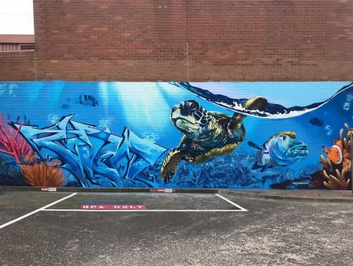Damien Arena - Murals and Art