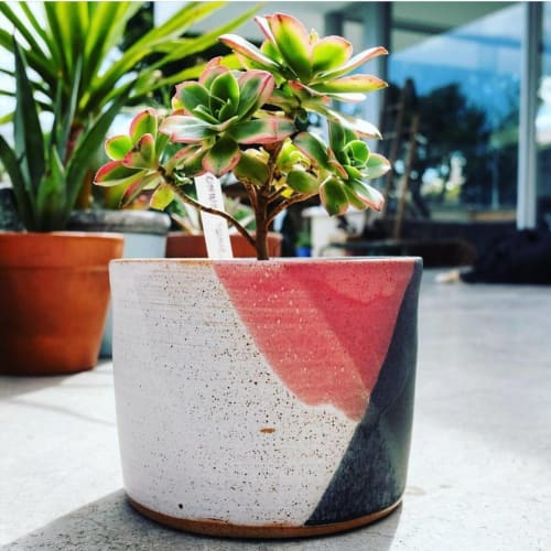 Vases & Vessels by LillyPilly Pottery seen at Pulp Kaktus, Williamstown - Ceramic Planter