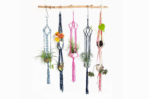 Macrame Wall Hanging by Modern Macramé by Emily Katz at Private Residence - Portland OR, Portland - Jungle Love Single Plant Hanger