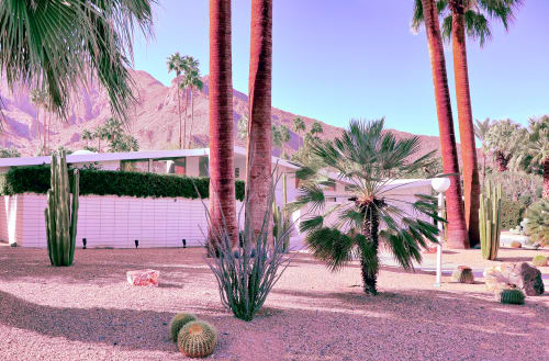 Photography by Kristin  Hart  Studios seen at Private Residence, West Hollywood - PALM SPRINGS
