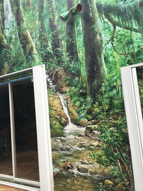 Murals by Murals by Georgeta (Fondos) seen at Private Residence, Parkland - Residential Rainforest mural