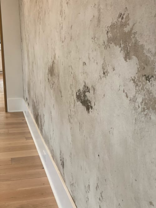 Wall Treatments by EMILY POPE HARRIS ART seen at Private Residence, Mount Pleasant - Custom Plaster wall