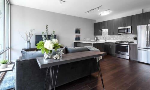 Interior Design by Brianne Bishop Design seen at Luxe on Chicago Apartments, Chicago - Interior Design