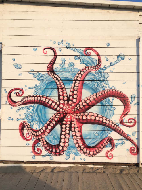Murals by JahOne seen at Lozenets, Lozenets - Octopus