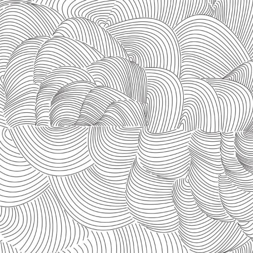 Wallpaper by Jill Malek Wallpaper - Cocoon   Charcoal