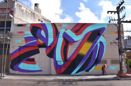 Murals by HARYMBAT seen at Buenos Aires Province - Random effects