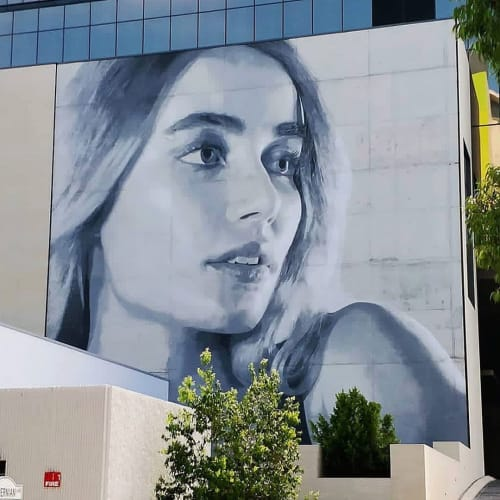 Murals by Rone seen at Hibernian Place, Perth - Mural