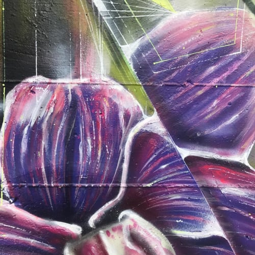 Street Murals by Max Ehrman (Eon75) seen at Lower Haight, San Francisco - Orchids Mural