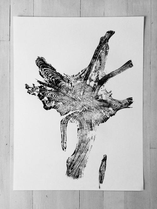 Real Tree Roots, Tree Ring Print | Art & Wall Decor by Erik Linton