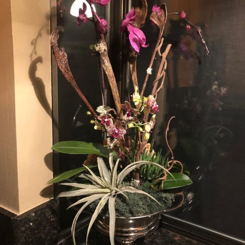 Floral Arrangements by Fleurina Designs seen at Private Residence, Los Gatos - Luxurious Orchid