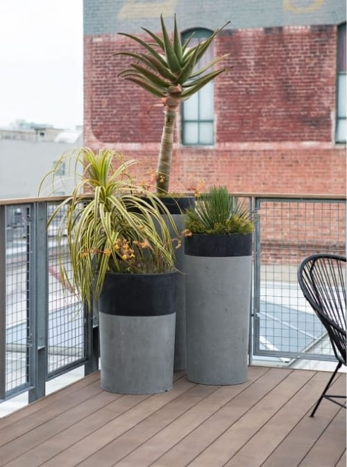 Vases & Vessels by Concreteworks seen at GitHub, San Francisco - Concrete Planters