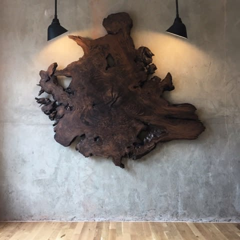 Sculptures by Evan Shively and Arborica at Waxman's, San Francisco - Wall Art
