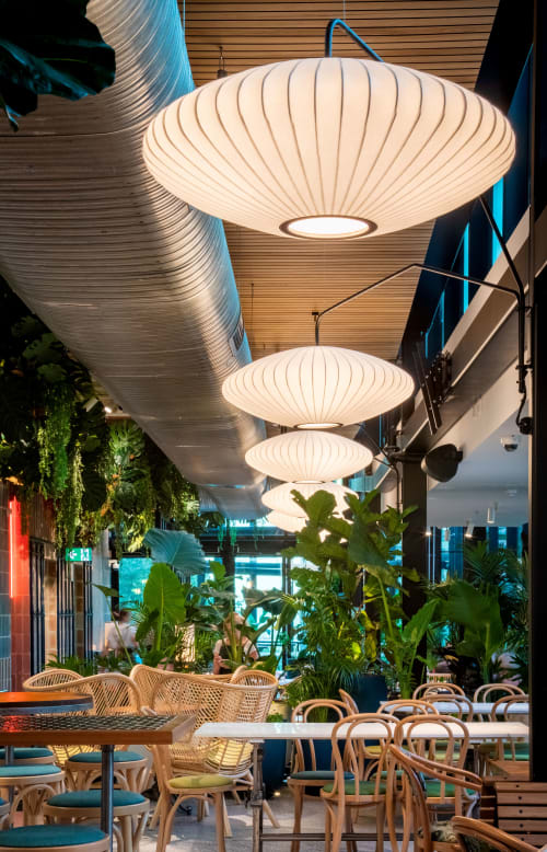 Interior Design by redwah studio seen at North Sydney, North Sydney - The Green Moustache