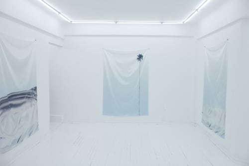 Petra Cortright - Paintings and Murals