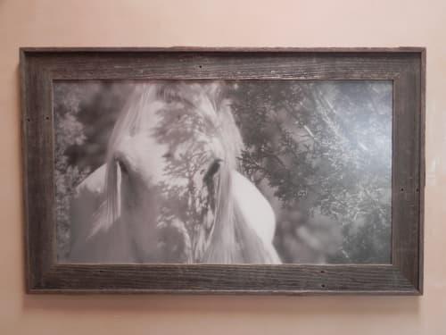 Photography by Andrea Bonfils at Private Residence, Santa Fe - Wild Horses