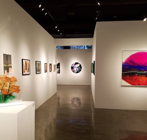 Paintings by Sarupa Sidaarth seen at Brea Gallery, Brea - Plasticized