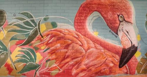 Emma-Alyce Art Australia - Murals and Street Murals