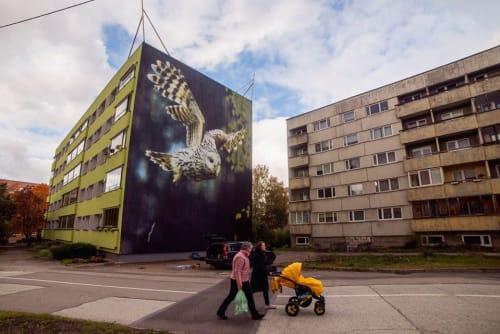 Street Murals by Robot Muralist seen at Kaunase puiestee 47, Tartu - Owl Mural