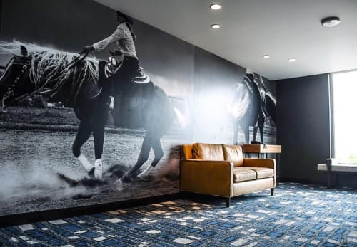 Murals by Lauren Berley seen at DoubleTree by Hilton Greeley at Lincoln Park, Greeley - Equestrian Girl