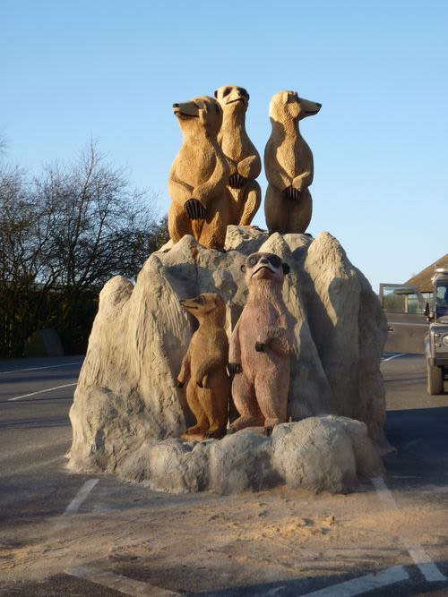 Public Sculptures by Tim Burgess seen at Knowsley Safari, Prescot - Five Meerkats