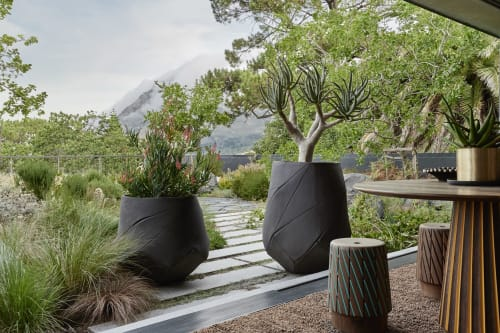 Furniture by Indigenus seen at Private Residence, Cape Town - Bhaca Planters - Designed by Andile Dyalvane