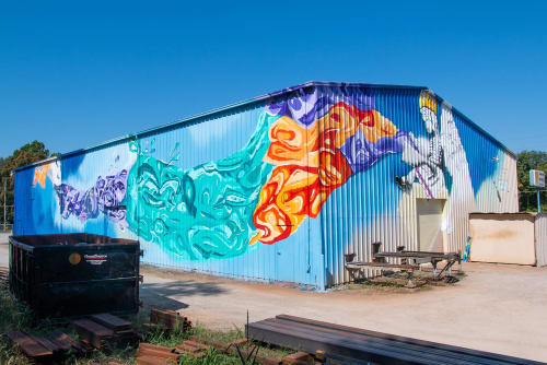 Murals by Sophi Odling seen at Indiana - Wabash Walls USA
