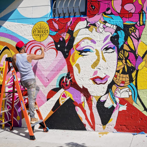 Street Murals by J Manuel C seen at 940 Grove St, San Francisco - The 8th Painted Lady