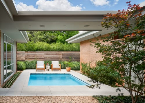 Plants & Landscape by Word + Carr Design Group seen at Private Residence, Austin, Austin - Plants & Landscape